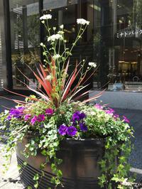横浜元町 花と器のハーモニー - piecing・針仕事と庭仕事の日々