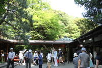 小石川後楽園の6月(菖蒲・紫陽花・・・) - マルオのphoto散歩