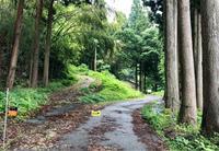 カタハ採り - そば処花川blog 吉野谷の風の中で