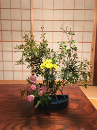 今月の花 - TeRa Life