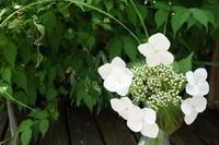 初夏の香りpart2 - g's style day by day ー京都嵐山から、季節を楽しむ日々をお届けしますー