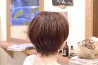 髪の履歴 - 館林の美容室~一人だから誰にも気を使わないプライベートな空間~髪を傷ませたくないあなたの美容室 パーセプションのウェブログ