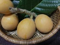 初物ばかりサクランボ・桃など - 島暮らしのケセラセラ