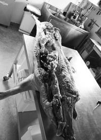 マルケ・イタリア農家の昔ながらの生活 2(肉の解体) - グルグルつばめ食堂