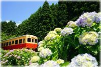 小湊鉄道・いすみ鉄道 - とまれみよⅡ
