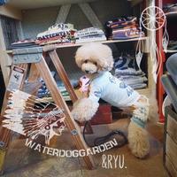 WaterDogGarden - IloveRyu