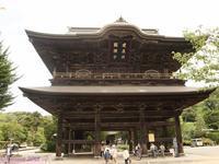Kamakura walk, looking for Japanese hydrangea, sharasu-don bowl. - Hike in and around Tokyo