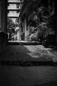 東京スナップ #316 - 心のカメラ / more tomorrow than today ...