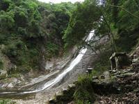 観音滝と朝散歩 - 清治の花便り
