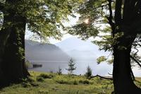 静かな湖畔... - カメラを持って出かけよう