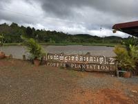 カンボジア旅・コーヒー農園へ - Da bin ich! -わたしはここにいます-