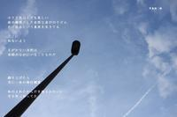 飛行機雲 - 花の咲み、花のうた、きらめく地上 ―― photo&poem gallery kanon