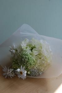 レッスン4月のご報告 - 花と暮らす店 木花 Mocca