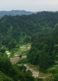 山間の棚田 - 松之山の四季2