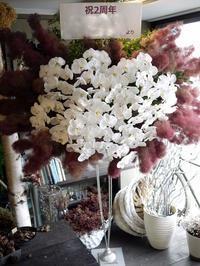 お店の2周年に、胡蝶蘭とスモークツリーのスタンド花。「華やかに」。南6条にお届け。2018/06/07。 - 札幌 花屋 meLL flowers