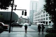 雨 - summicron