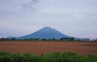 6月10日今日の写真 - ainosatoブログ02