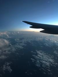 飛行機離陸のとき - こもれびのなかで。