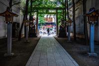 参道 - 晴の日・雨の日