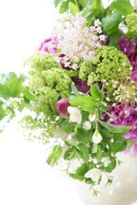 お詫びとお願い - お花に囲まれて
