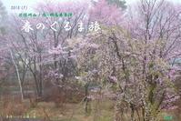 2018 (7) 北信州-山ノ内・群馬県草津温泉 春のくるま旅 - 日本全国くるま旅