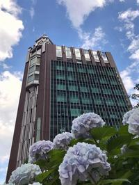 京橋にて - 森まどかのメロメロ*メロンパン日和