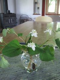 ジュリエット・ビノシュの花束 - ギャラリーファブリル