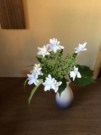 初夏から梅雨へー芒種 - g's style day by day ー京都嵐山から、季節を楽しむ日々をお届けしますー