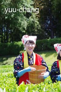 2018.5.20 後楽園茶摘み娘2 - 下手糞PHOTO BLOG