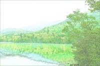 奥日光・湯の湖の新緑 3 - 光 塗人 の デジタル フォト グラフィック アート (DIGITAL PHOTOGRAPHIC ARTWORKS)