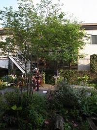 とあるカフェのライブへ - 早田建築設計事務所 Blog