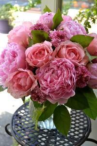 そういうとこだぞ! - 花色~あなたの好きなお花屋さんになりたい~