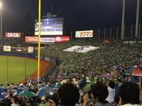 弾みがついた全員野球 チームワークは日本一 - ファン歴45年 神宮の杜