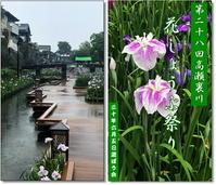 雨の中裏川菖蒲祭りへ - 気ままにデジカメ散歩