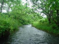 史跡中川堰を渡り - 「 ボ ♪ ボ ♪ 僕らは釣れない中年団 ♪ 」