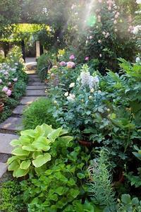 Design Team Liviuさんとの薔薇の園遊会 - 元木はるみのバラとハーブのある暮らし・Salon de Roses