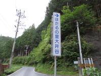 熊野の蛍そして笹百合 - 「樂」と「木の家」
