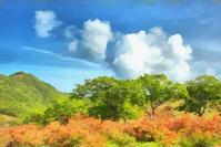 赤城山・白樺牧場のレンゲツツジ - 光 塗人 の デジタル フォト グラフィック アート (DIGITAL PHOTOGRAPHIC ARTWORKS)