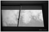 窓の外 - BobのCamera