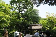 晩春の京都の旅 - L S C H