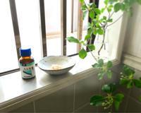 トイレの芳香剤問題。 - old house × new Life