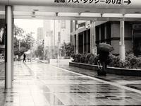 6月13日 今日の写真 - ainosatoブログ02