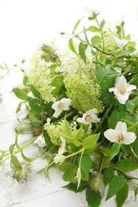 サマーブーケで夏を爽やかに♪ - お花に囲まれて