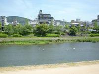 憧れの町家ステイ 鴨川沿いの町家に滞在♪  - mayumin blog 2