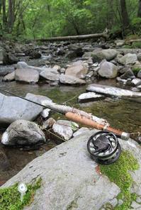 近所の渓流でイワナ調査かな・・・・ - アンパラなブログ   フライ、トラウトルアー編