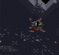 Doomパパ2匹沸きでの立ち位置 - 本当の戦士には剣など要らぬ