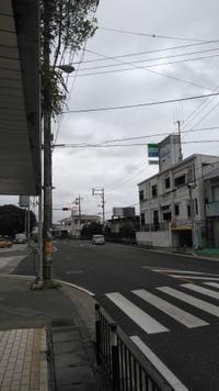 嫌な予感・・・ - 沖縄本島最南端・糸満の水中世界をご案内!「海の遊び処 なかゆくい」