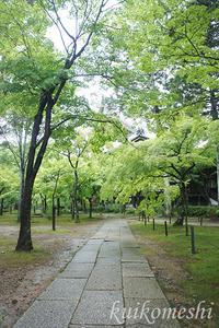 京都旅行05-真正極楽寺 (真如堂) - クイコ飯-2