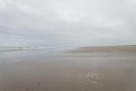 今日の朝の海 - 東に向かえば海がある