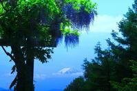 30年6月の富士(4)柳沢峠の富士 - 富士への散歩道 ~撮影記~